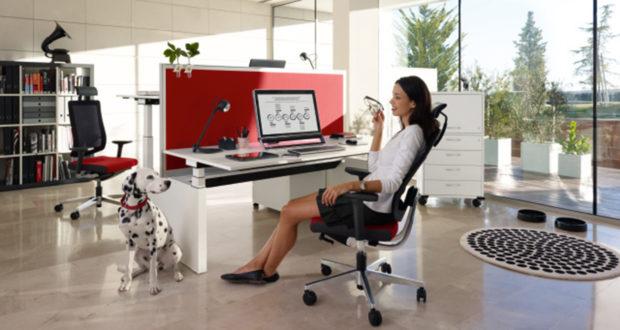 sedus b rostuhl fachh ndler darmstadt carala. Black Bedroom Furniture Sets. Home Design Ideas